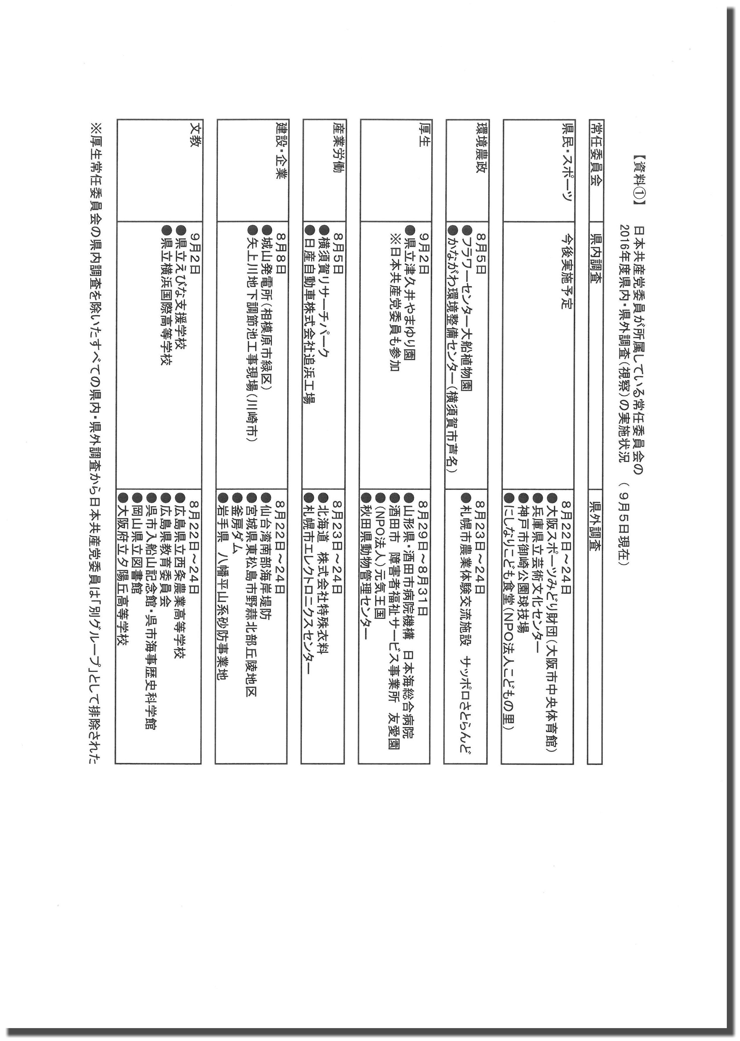 shisatsu-shiryo-kage
